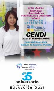 Pendon Erika Juarez CENDI